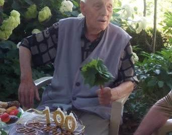 100-летник