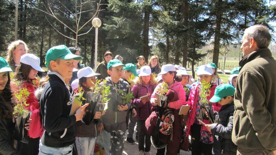 Седмица на гората Джулюница, Лясковец